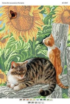 Коти та метелик (част. виш) БС-3019 Сяйво БСР