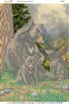 Сім'я ведмедів в лісі
