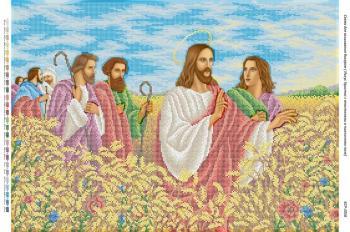 Ісус Христос з апостолами в пшеничному полі БСР-2058 Сяйво БСР