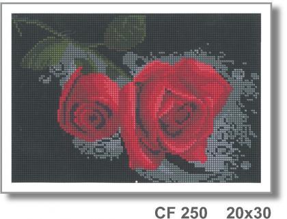 Червона троянда CF 250 Твоє хоббі