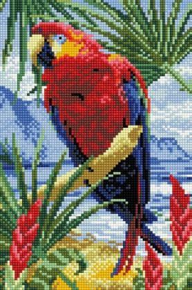 Папуга DT706 Алмазна мозаїка IF
