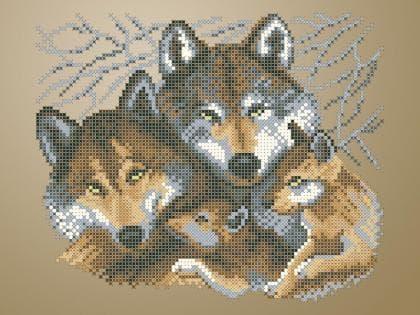 Сімейство вовків ЧВ-3429 К Бісерок