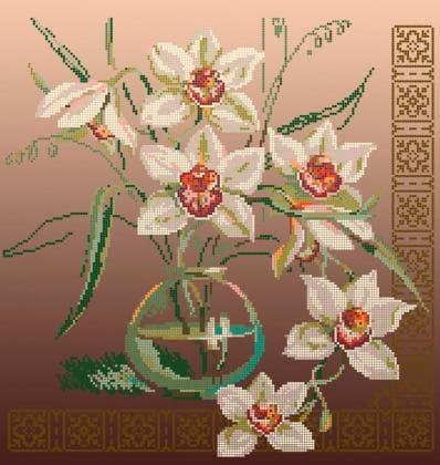 Орхідеї ЧВ-6007 К Бісерок
