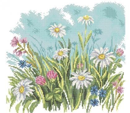 Польові квіти ЧВ-6045 Бісерок