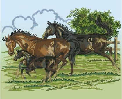 Коні ЧВ-6047 Бісерок