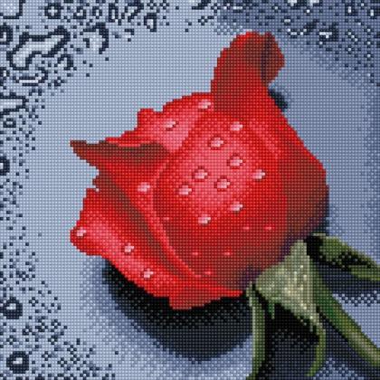 Троянда червона TT602 Алмазна мозаїка IF