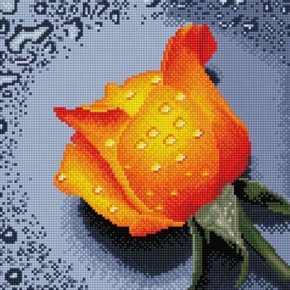 Троянда оранжева TT605 Алмазна мозаїка IF