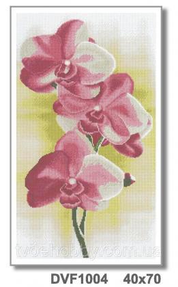 Орхідея DVF 1004 Твоє хоббі