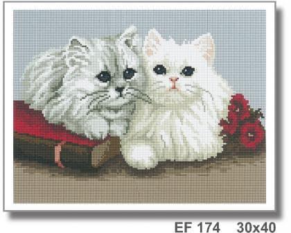 Кошенята EF 174 Твоє хоббі
