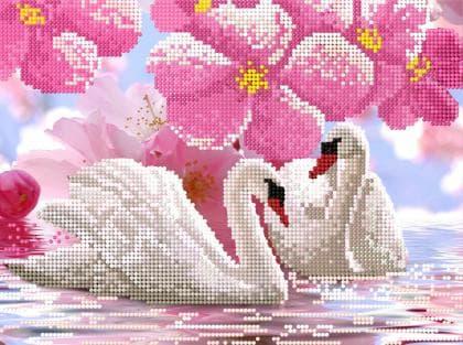 Лебеді в квітах