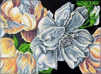 Білі квіти F-500 Світарт
