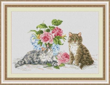 Двоє кошенят VN-142 Olanta