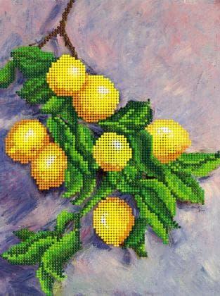 Лимони FV-042 Світарт