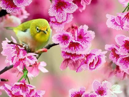 Пташка в квітах