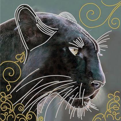 Чорна пантера FV-110 Світарт