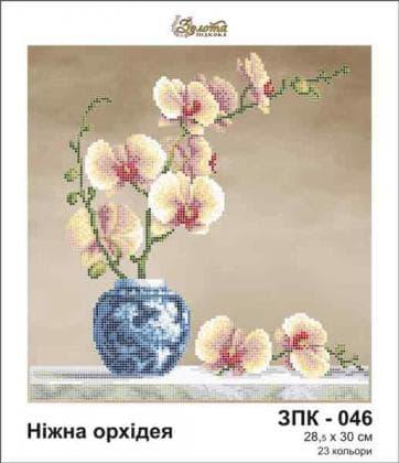 Ніжна орхідея ЗПК-046 Золота підкова