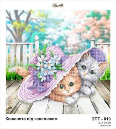 Кошеня ЗПТ-019 Золота підкова