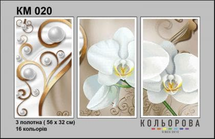 Орхідея КМ-020 Кольорова