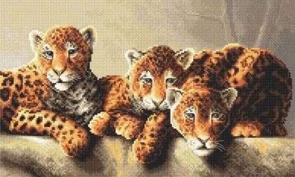 Леопарди LETI 910 Letistitch