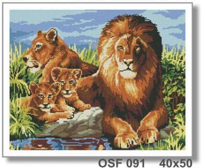 Сімя левів OSF 091 Твоє хоббі
