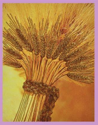 Золотий урожай Р-064 Картини бісером