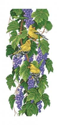 Пташки і виноград П-255 Бісерок