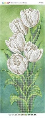 Білі тюльпани ПМ-4101 Сяйво БСР