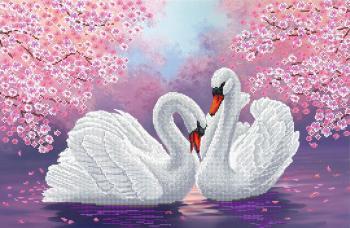 Пара білих лебедів біля вишні