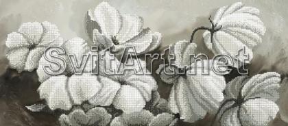 Квіти SI-874 Світарт
