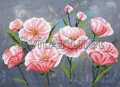 Польові квіти Si-884 Світарт