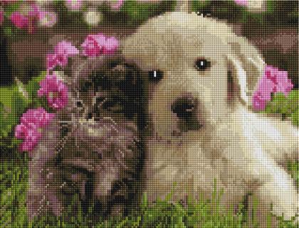 Котик і песик ST451 Алмазна мозаїка IF