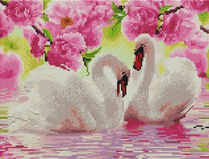 Пара лебедів ST453 Алмазна мозаїка IF