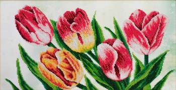 Весняні тюльпани