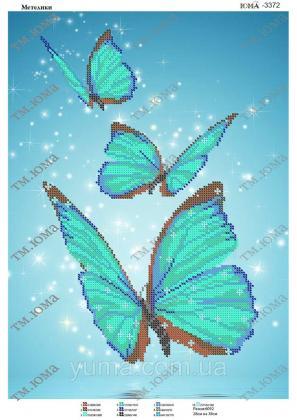 Метелики  ЮМА-3372 ЮМА